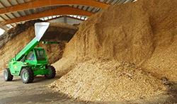 biomasse legnose
