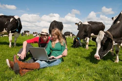 internet in campagna