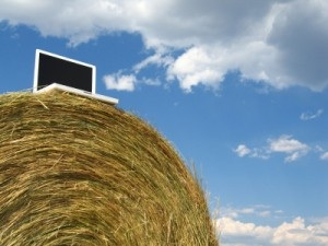 internet of things in campagna