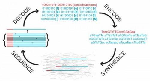 DNA-data-storage-Got-Eco-Technology (1)
