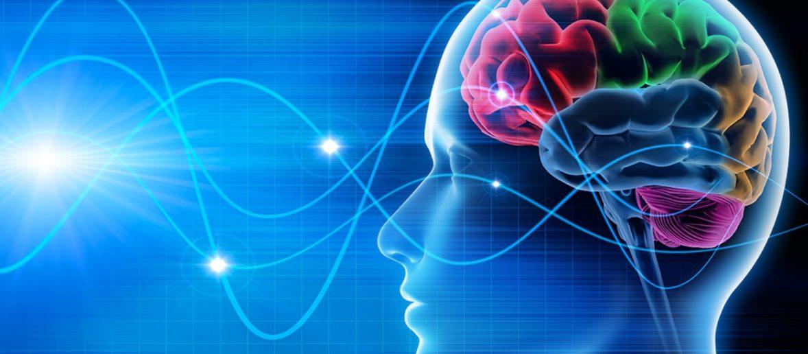 Economia comportamentale e neuromarketing ultima frontiera, intervista a Riccardo Palumbo